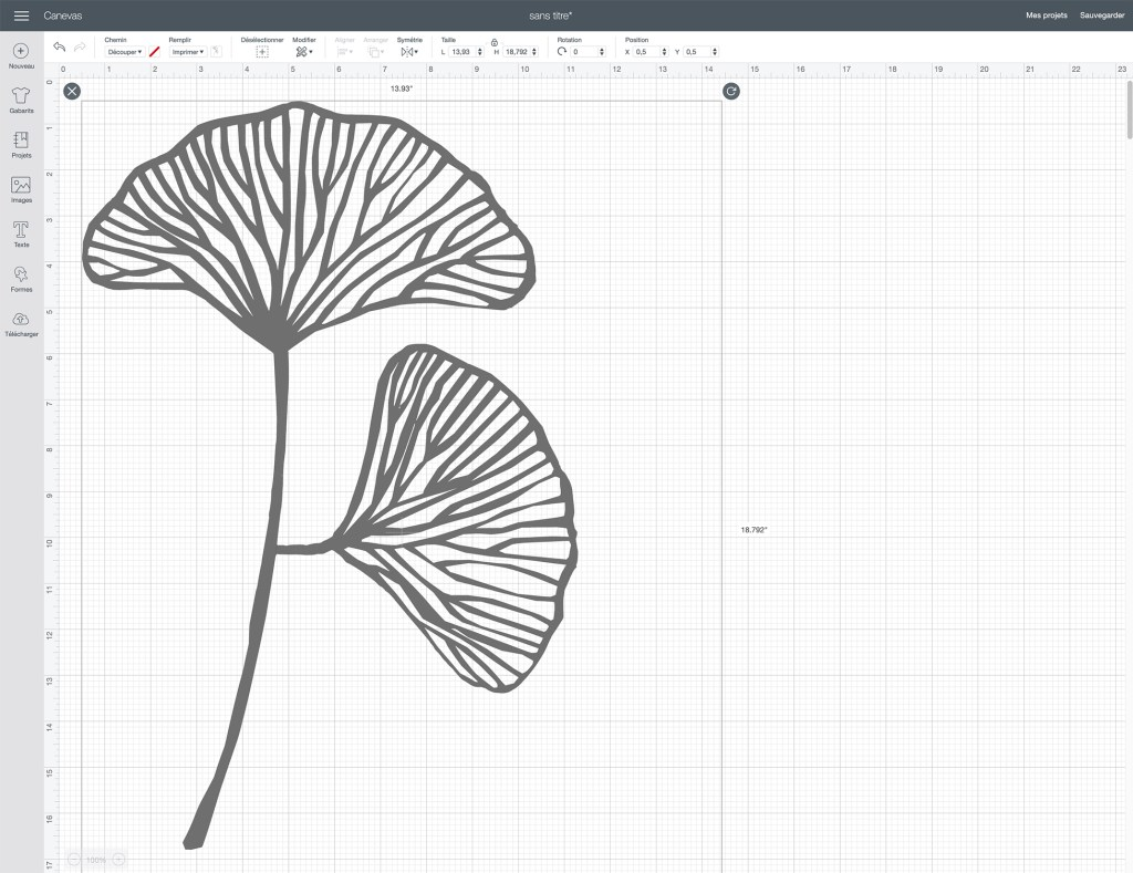 cricut design maker decoupe gingko