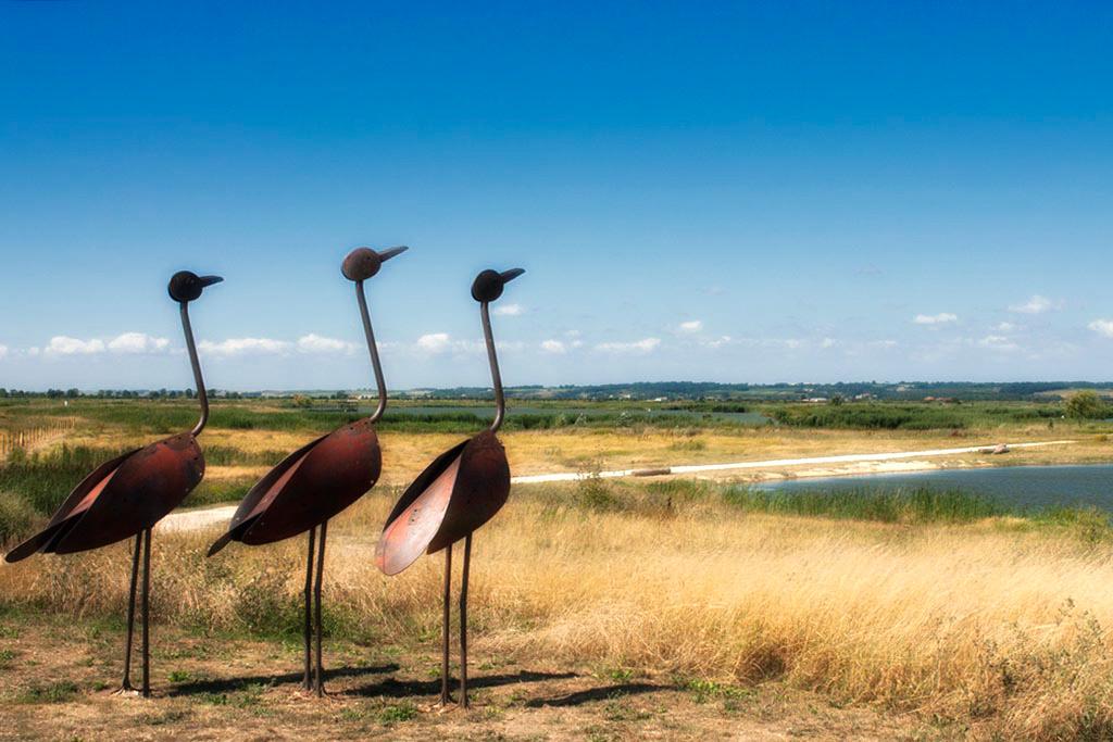 Sculptures au pole nature
