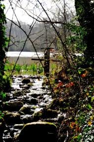 Tiny streams form waterfalls between ponds