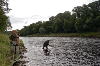 Fish on for Bywell