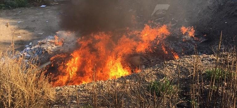Roghi in città, Spina: «Non credo siano arbusti bruciati, in pericolo la salute dei cittadini»