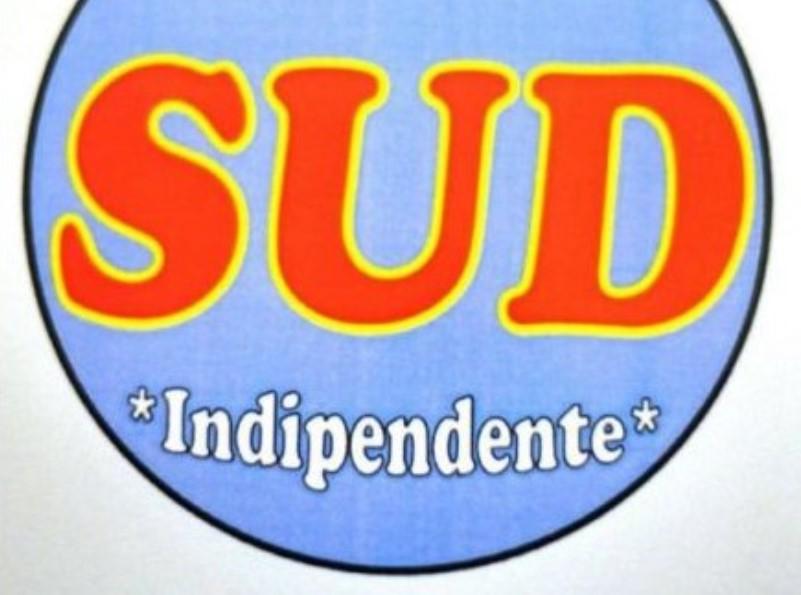 """Regionali, """"Sud indipendente"""", ecco il progetto politico del movimento"""
