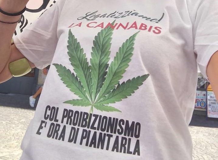 Regionali, proposta Scalfarotto: legalizziamo la cannabis