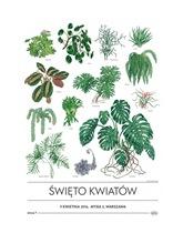Plakat Kwiaty Zielone