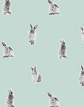 okleina na meble króliki