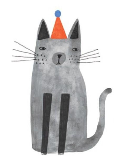solak kot w kapeluszu
