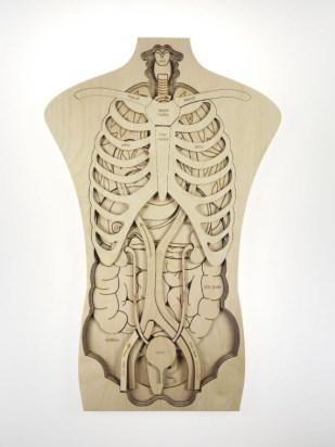 organy stukapuka