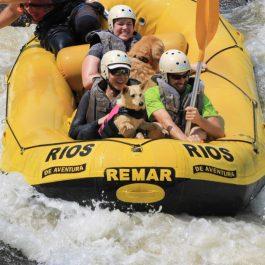 rafting com caes_ladobviagem