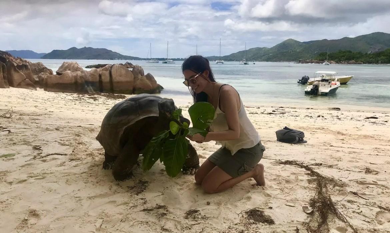 Curieuse island, a ilha das tartarugas gigantes em Seychelles