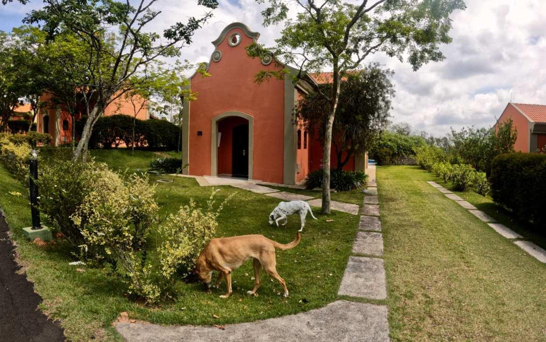 Lofts do Villa Rossa foram o espaço dedicado a quem leva seus pets (foto Andrea Miramontes / Lado b Viagem )