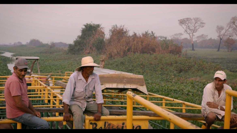 filme pantanal