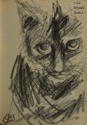"~ Fusain / Charcoal Issu du / From the "" Book of Feline Dreams "" ~"