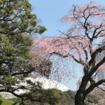 《満席》5/02(火)GW特別企画「はじめての算命学」