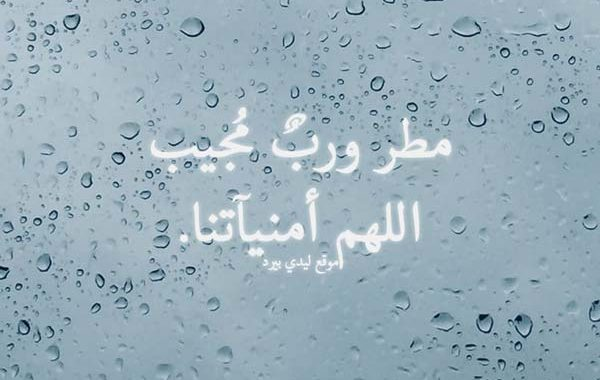 دعاء في المطر ليدي بيرد
