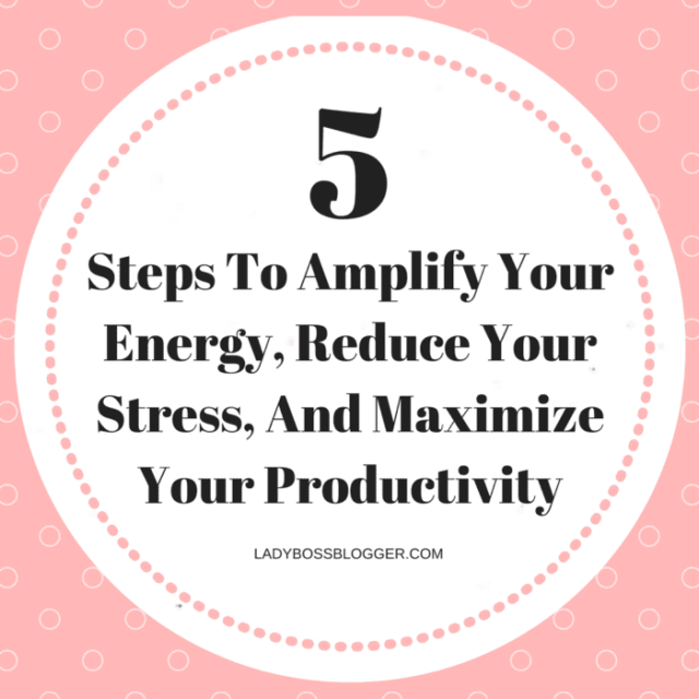 5 Steps To Amplify Your Energy, Reduce Your Stress, And Maximize Your Productivity written by Craig and Jenny D