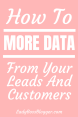 customer data ladybossblogger