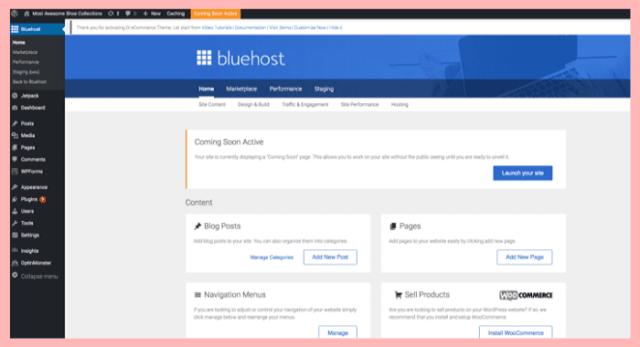 bluehost ladybossblogger how to start a blog
