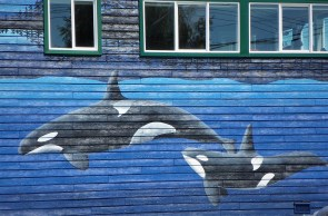 whales on wall