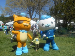 The Octonauts