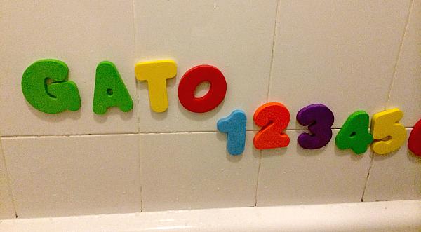 gato_1234