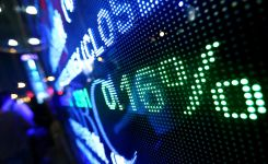 Tech Stocks Boost Individual Investor Portfolios
