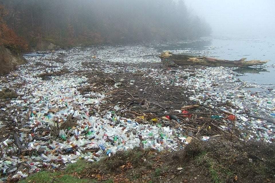 Chile Moves Towards a Plastic Bag-Free Future