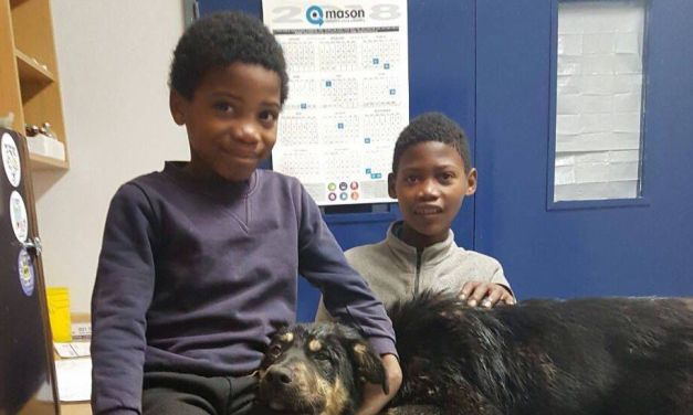 Hero Boys who Can't Afford Shoes Spend Entire Savings to Save A Dog's Life