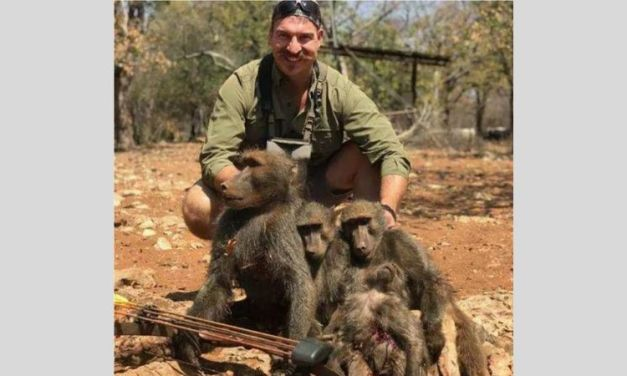 SIGN: Fire Wildlife Official Who Brutally Killed An Entire Baboon Family