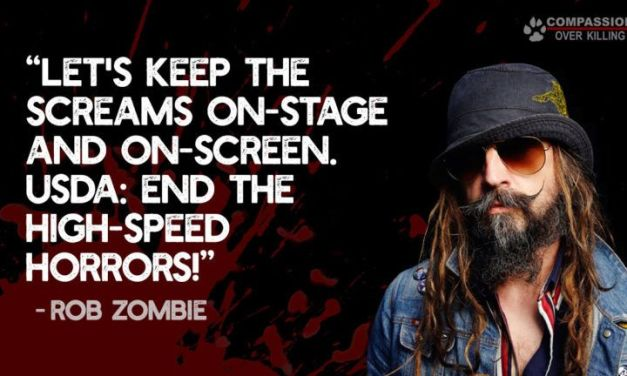 Rob Zombie Speaks Out Against High-Speed Slaughter Hell