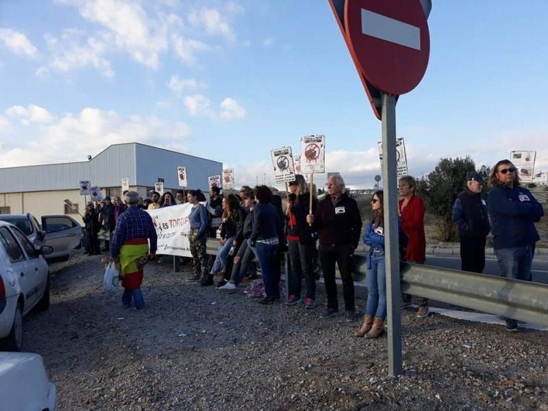 Protesters Denounce 'Barbaric' Bullfight in Albox, Spain