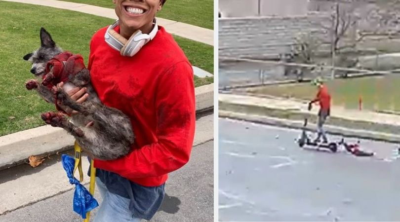 SIGN: Justice for Dog Dragged Down the Street Behind Scooter