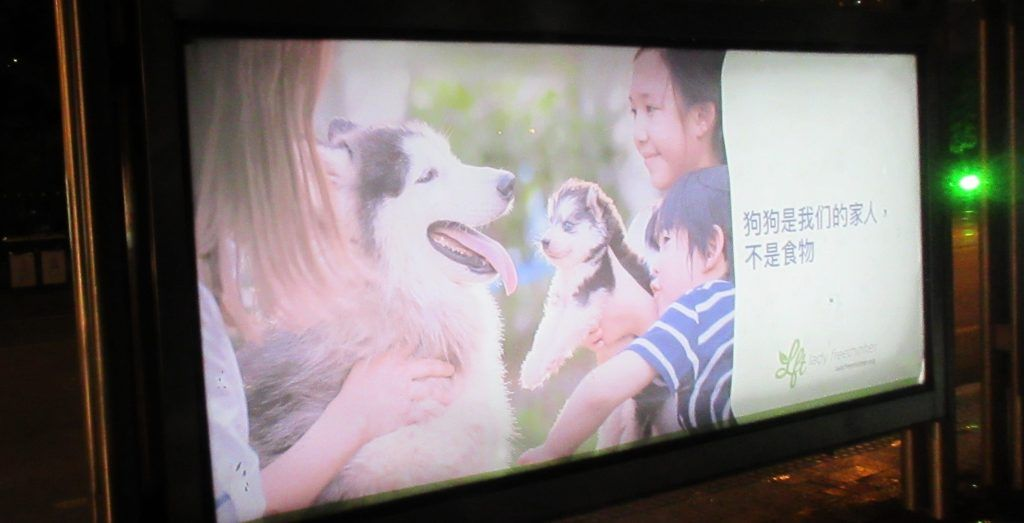 bus ad dog meat