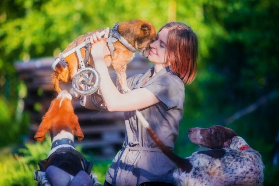 Woman Quits Career To Live In The Woods – With Over 100 Rescued Dogs!