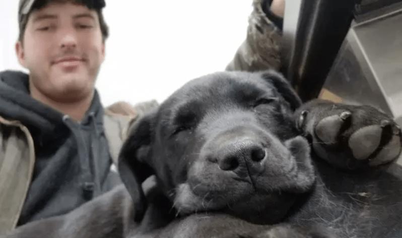 VIDEO: Deaf Man Adopts Deaf Puppy, Teaches Him Sign Language