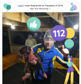 Facebook celebrates most liked photo of fighting dog_preview