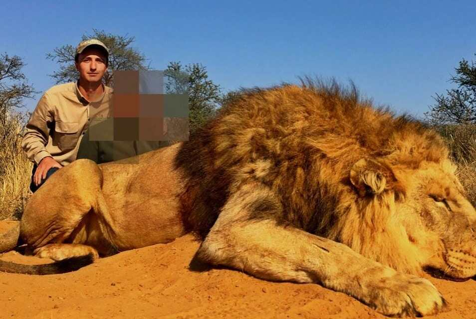 Exposed – This British Firm is Hosting Canned Lion Hunts