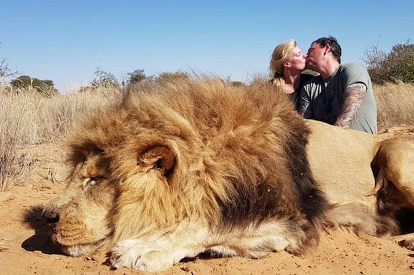 """Britain Set to Outlaw Import of Cruel Hunting """"Trophies"""""""