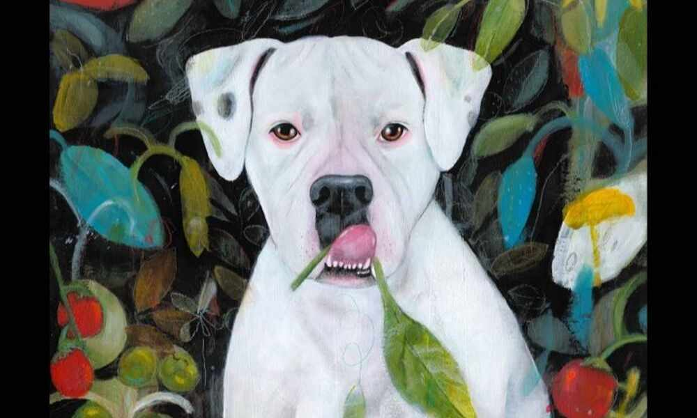 New Book Tells Dog's Zany, Real-Life Story to Spread Compassion for All Animals
