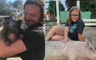 Animal Sanctuary Wants You to Cuddle with Their Rescued Pigs