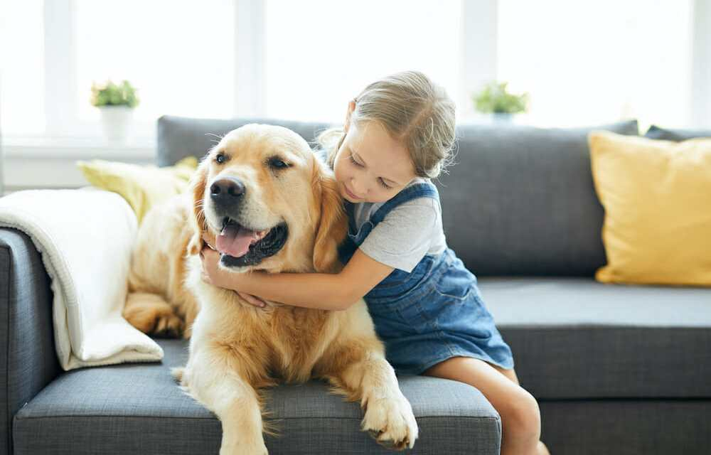 Having A Dog Makes Toddlers More Considerate to People, Study Finds