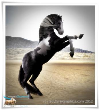 Daz Horse 2 Gypsy Vanner