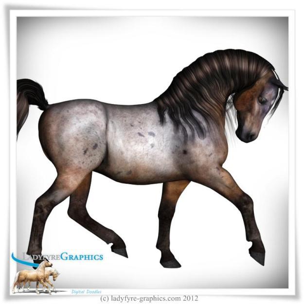 Pretty Pony Full Body Morph