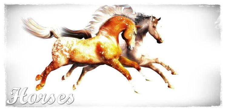 Poser and Daz Studio Horses 3d renders