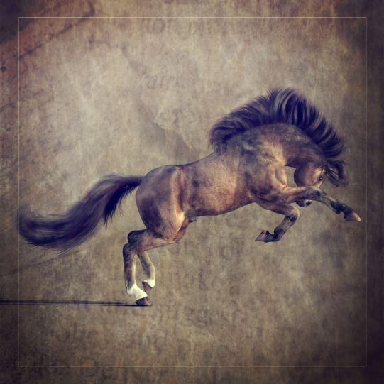 Native Pony Character for Daz Millennium Horse 1