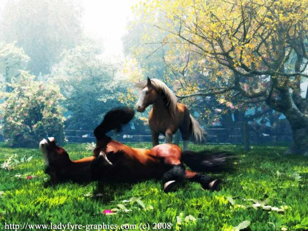normal_heavy-horses-playing-00008