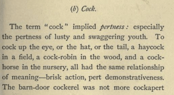 (b) Cock.