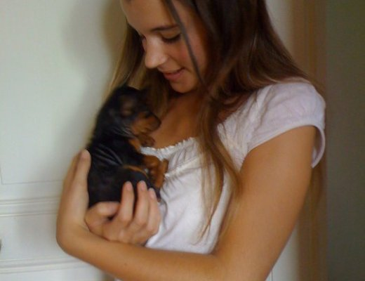 alt-lady-heavenly-pets-baby-dog