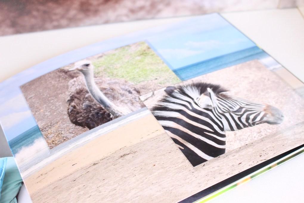 alt-île-maurice-safari