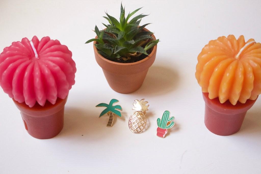 alt-pin's-deco-plante-cactus-bougie
