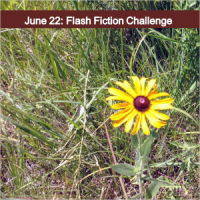 June 22: Flash Fiction Challenge - Dream